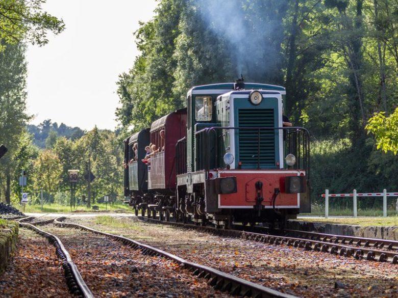 TTGM diesel 8