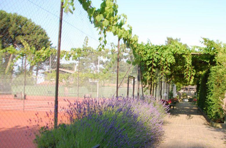 Tennis_De_La_Vigne (4)