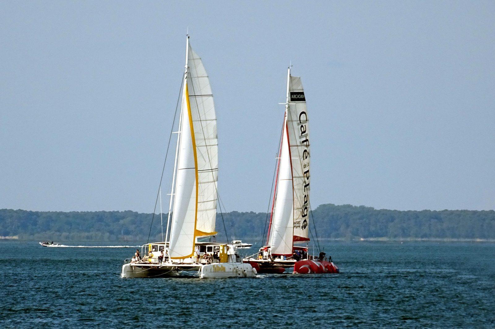 Les 2 catamarans géants à voile : Tip Top One et Tip Top Too
