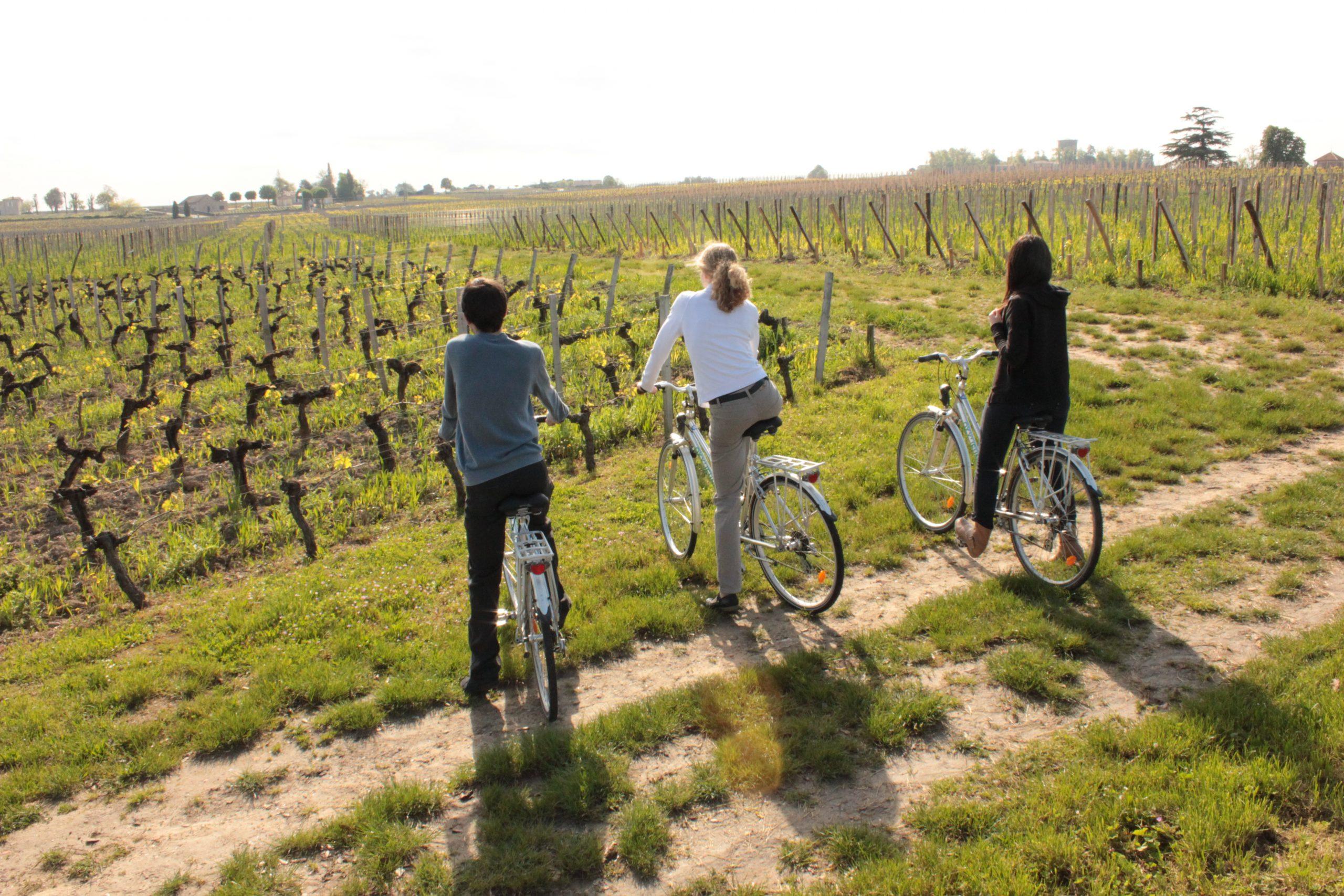 Vélo vignoble – (c) Saint-Emilion Tourisme5