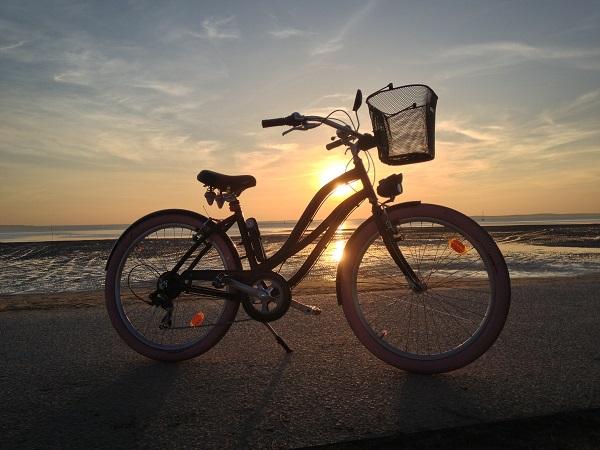 Vélo web