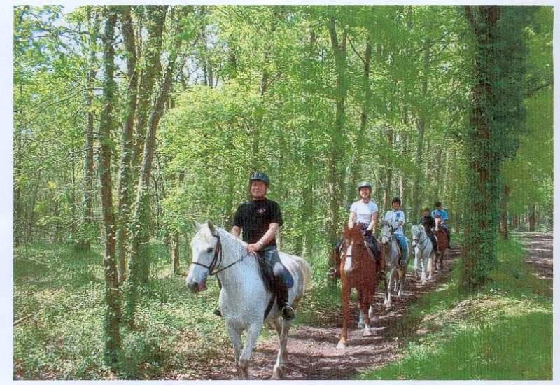 Villetorte Loisirs – Balade à cheval Le Teich