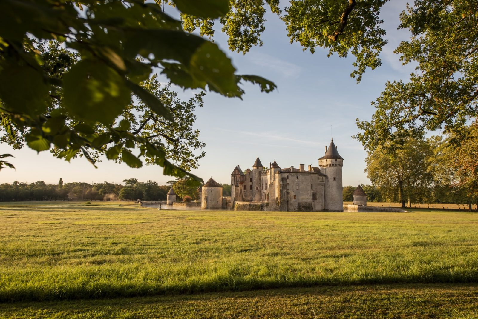 Vue ext 1®ANAKA-château de La Brède