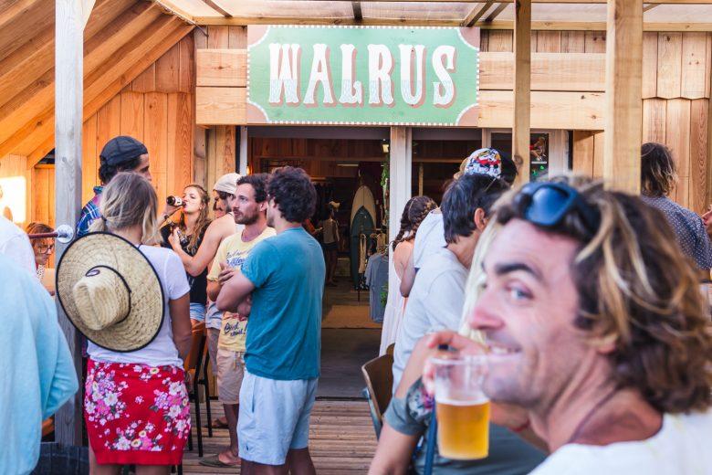 Walrus-2-