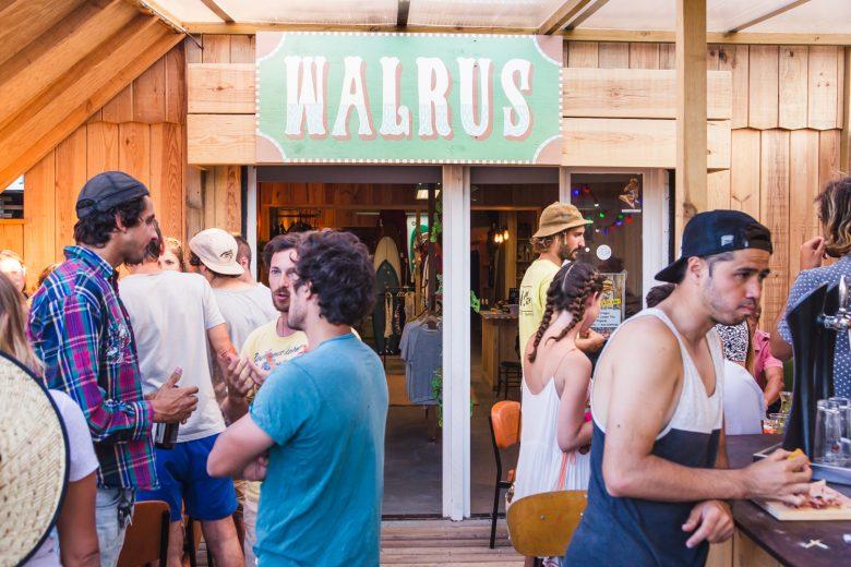 Walrus-3-