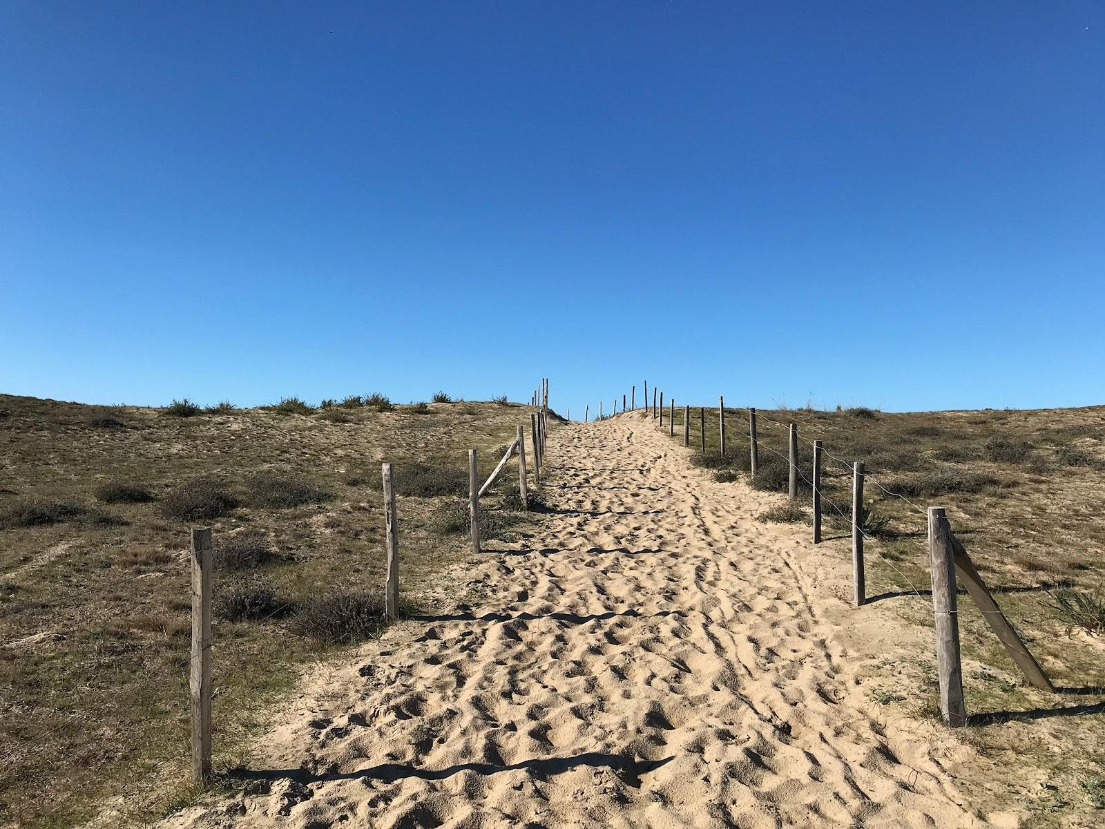 Zen Océan accès plage Vensac
