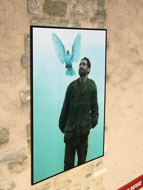 blaye-ville-galerie-photo Guerre-et-paix-de-Patrick-Chelli-de-800×600