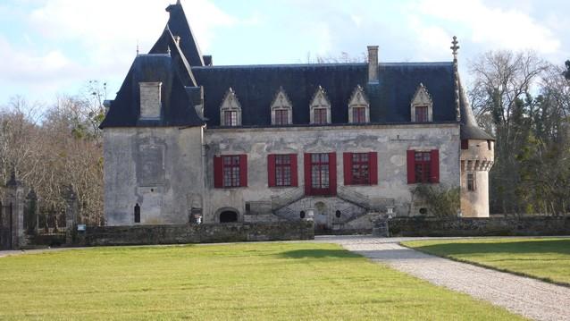 bordeaux-vignoble-pessac-leognan-cave-chateau-olivier-leognan (8)