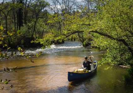 Canoë et kayak sur la Leyre