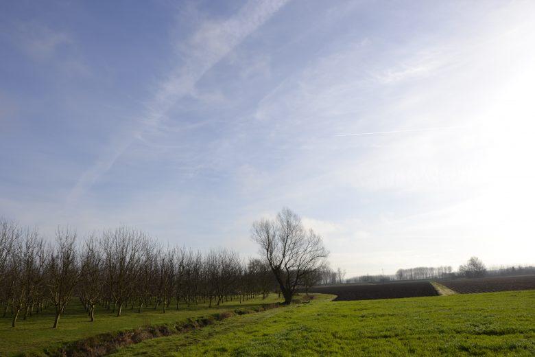 champs bassanne
