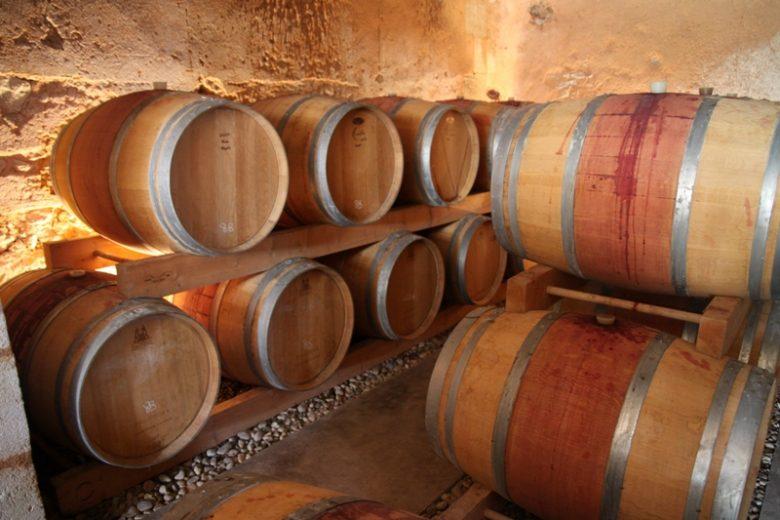 chateau-haut-colombier–Blaye-cotes-de-Bordeaux-cars-800×600