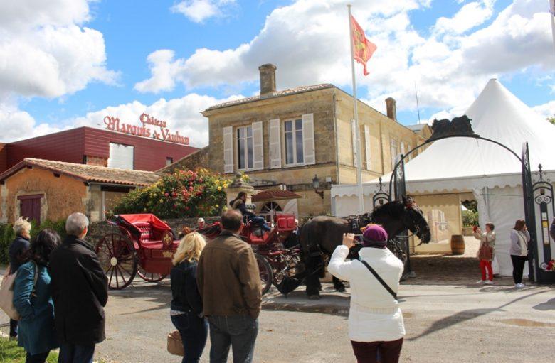 chateau-marquis-de-vauban-blaye-cotes-de-bordeaux-800×600-caleche