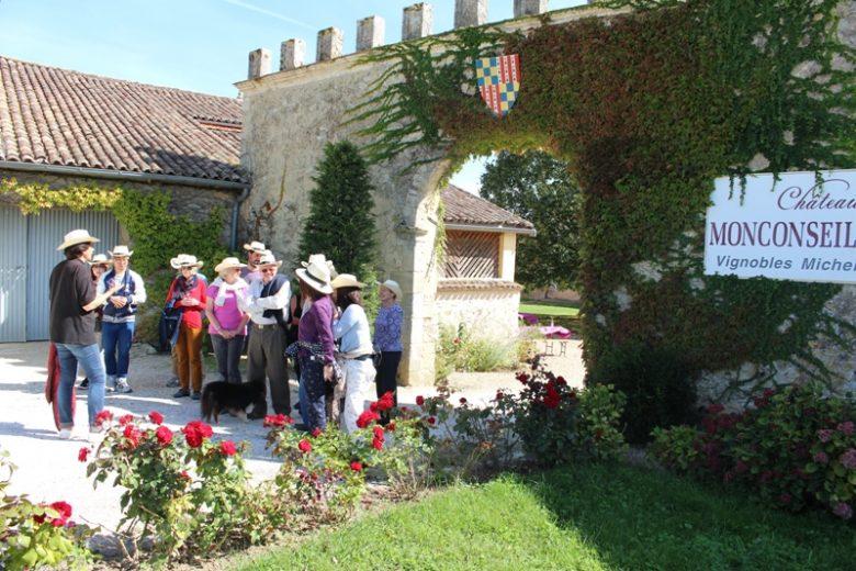 chateau-monconseil-gazin-vignoble-blaye-cotes-de-bordeaux–800×600