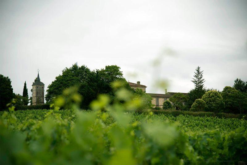 château peybonhomme les tours vignoble blaye côtes de bordeaux cars 800×600 – Rachelle