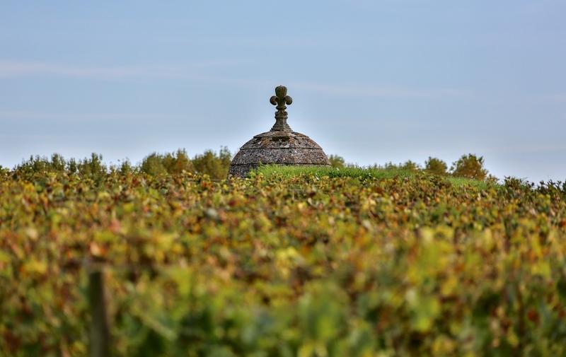 citadelle-Blaye-Unesco-vignoble-echauguette-800×600