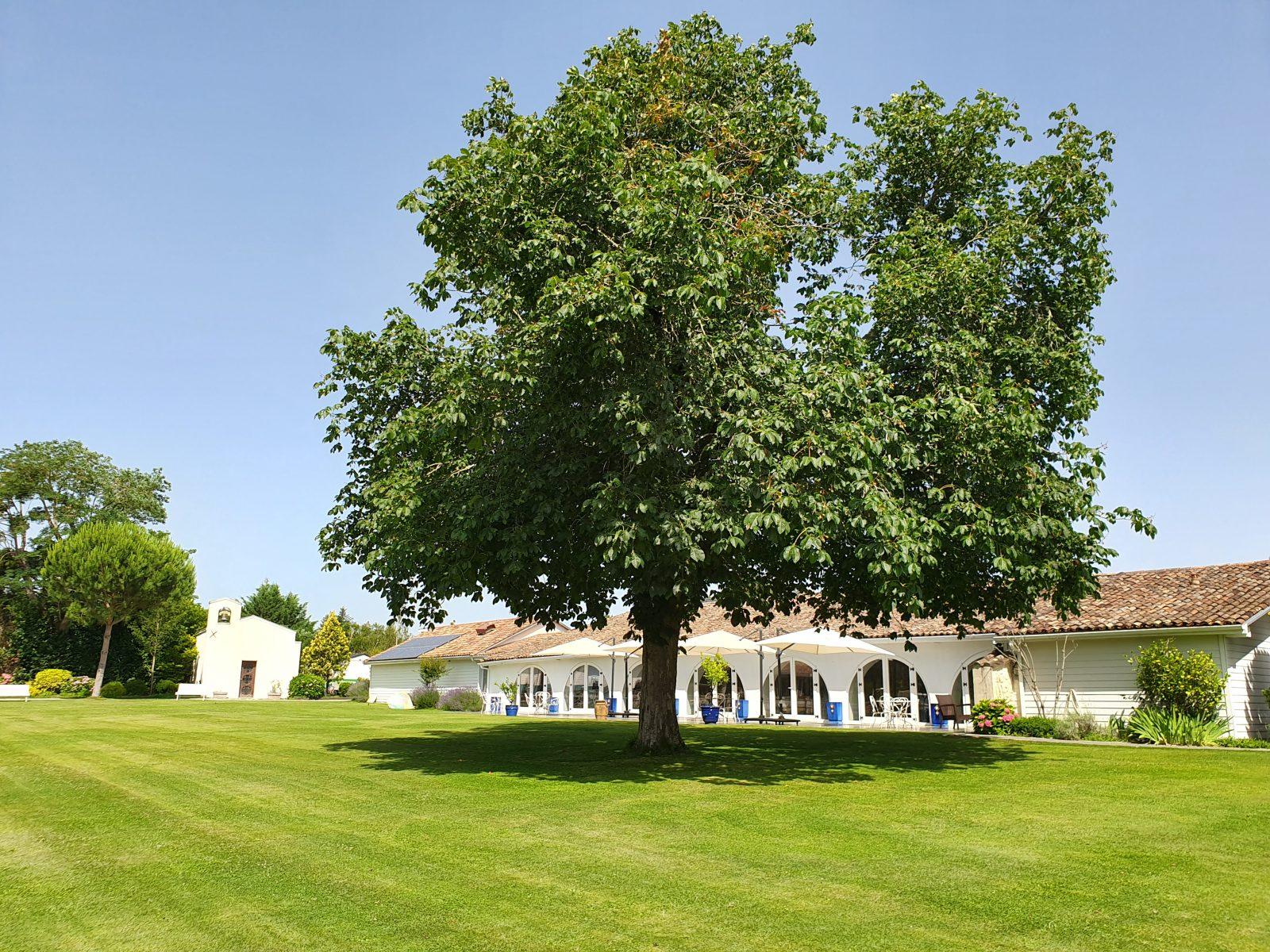 domaine-de-larchey-jardins-photos-tous-droits-reserves-service-communication-Domaine-de-Larchey–1-