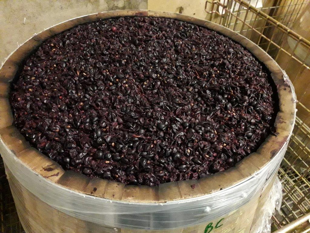 fermentation-integrale-du-cabernet-