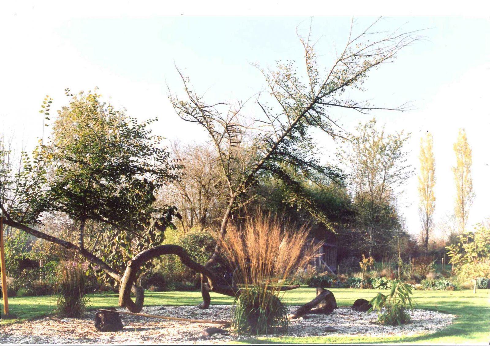 jardin du fonds de l'or (10)
