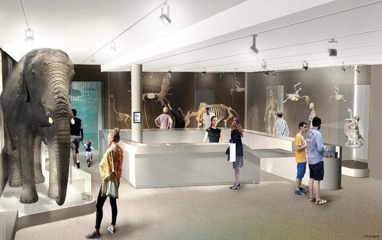 museum-bordeaux-2–c–Die-Werft