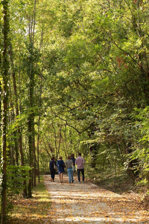 quatre-hectares-de-bois-existants-ont-ete-conserves