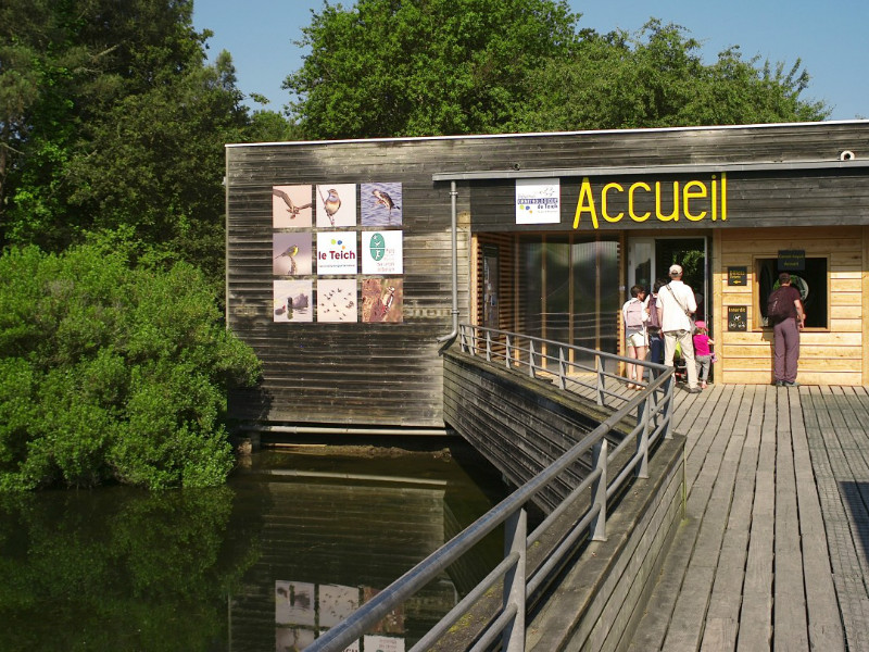Accueil Réserve Ornithologique du Teich