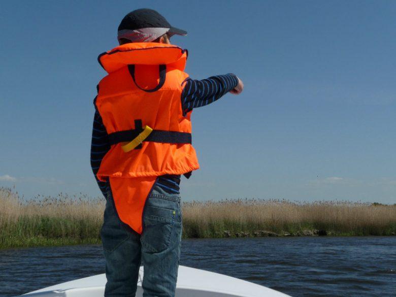 bateau électrique – écoplaisance du delta