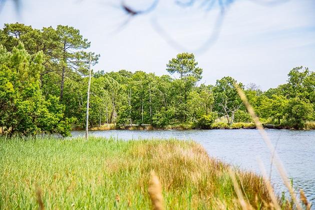 saint-brice-site-naturel – arès – bassin arcachon © Grégory Cassiau – Les Conteurs (4) –