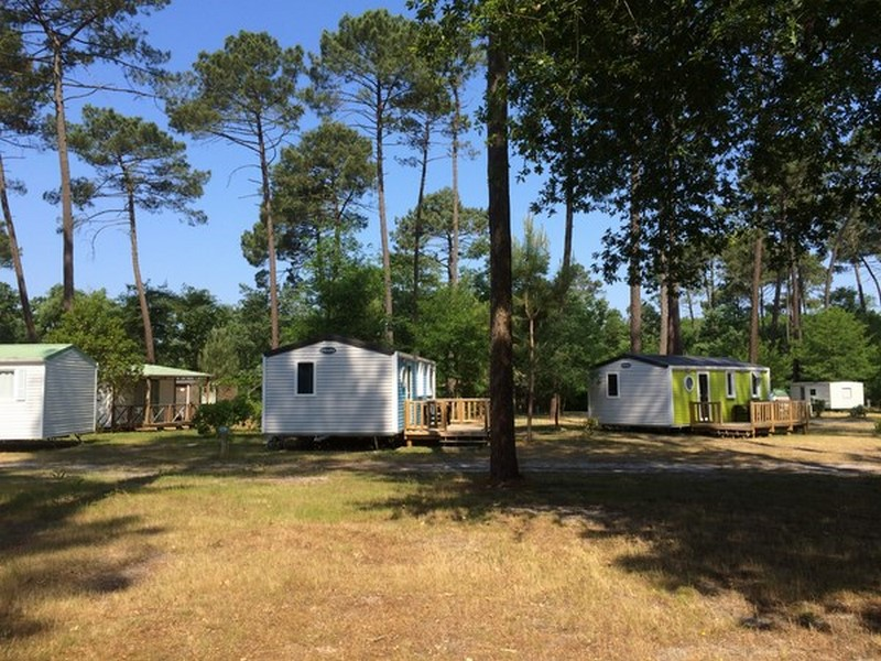 Camping Vert Bord'eau – SAINT SYMPHORIEN – Sud-Gironde
